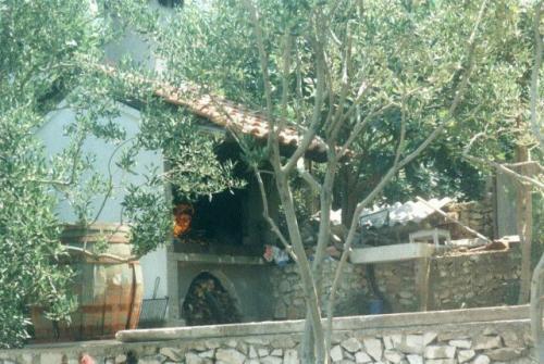 200105-y02.jpg